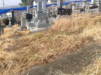 1月31日石坂ブログ写真.JPG