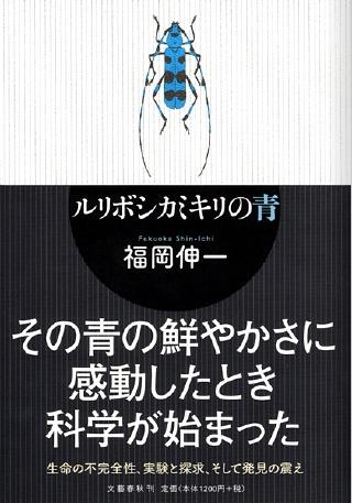 fukuoka_ruriboshi.jpg